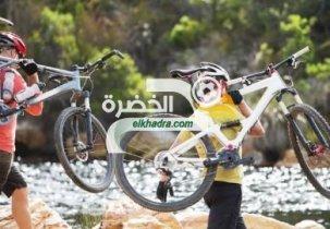 فضيحة إيطالية: المافيا تسرق الدراجات المشاركة في بطولة العالم 24