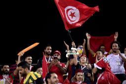 تخصيص 7 طائرات لنقل الجماهير التونسية إلى مصر لمؤازرة نسور قرطاج 29