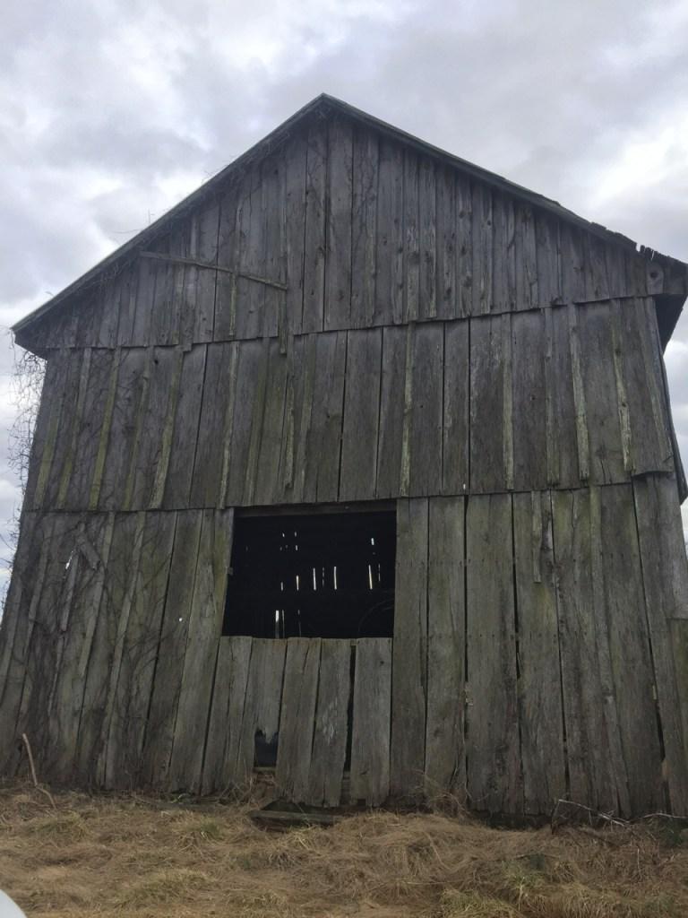 Oak barn wood