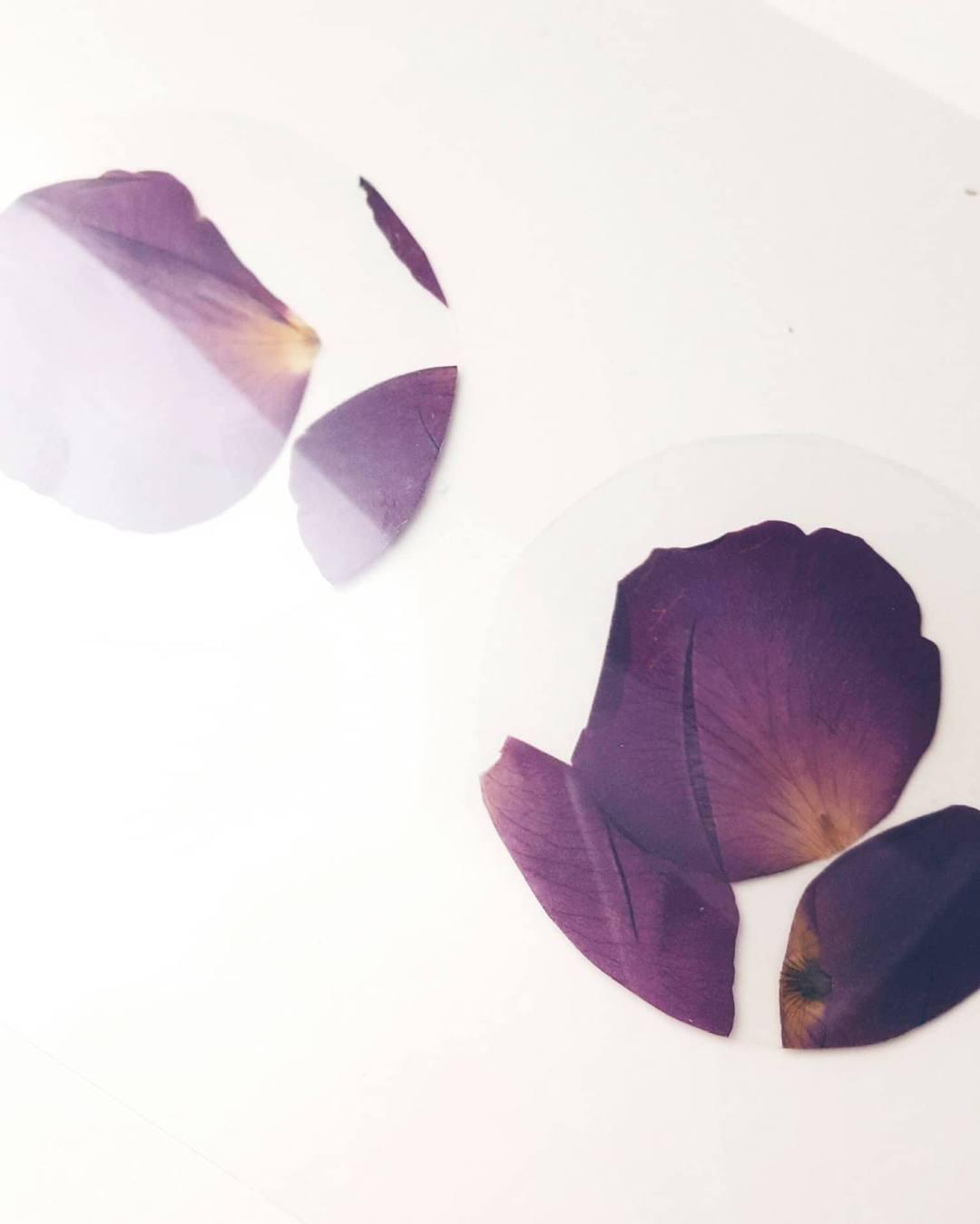 getrocknete rosenblätter ohrringe diy basteln