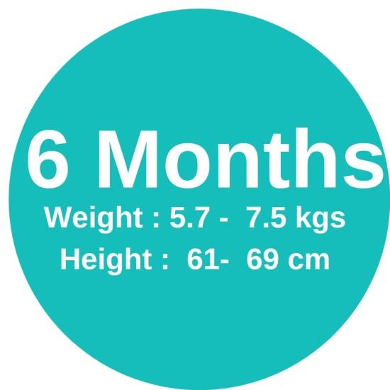 6m (5.7-7.5kgs)