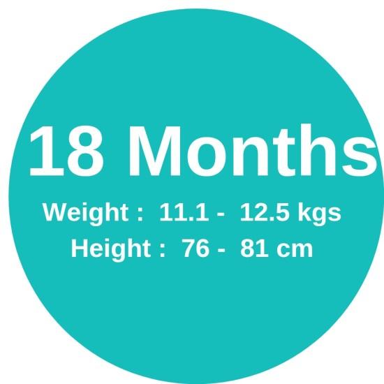 18m (11.1-12.4kgs)