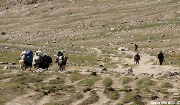 Day 1 of the kora: the trail turning and climbing from the Lha-chu Valley to Dira-puk Monastery (2010)