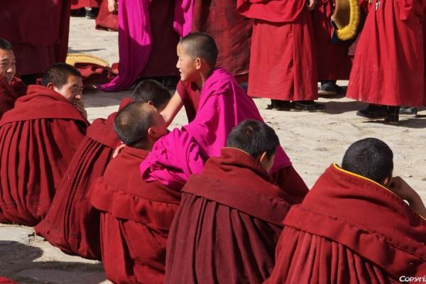 Labrang Monastery, Xiahe: monks debating at the court yard