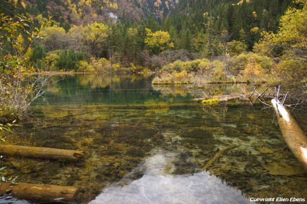 Jiuzhaigou National Park: Arrow Bamboo Lake