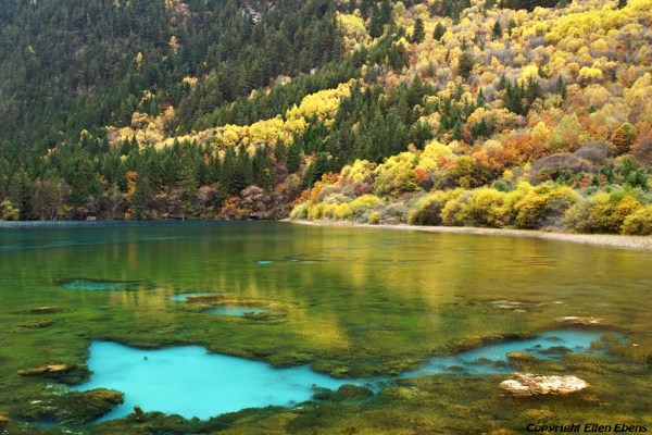 Jiuzhaigou National Park: Five Flower Lake