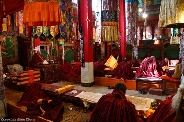 Monks reading Buddhist scriptures inside a hall at Tsurphu Monastery