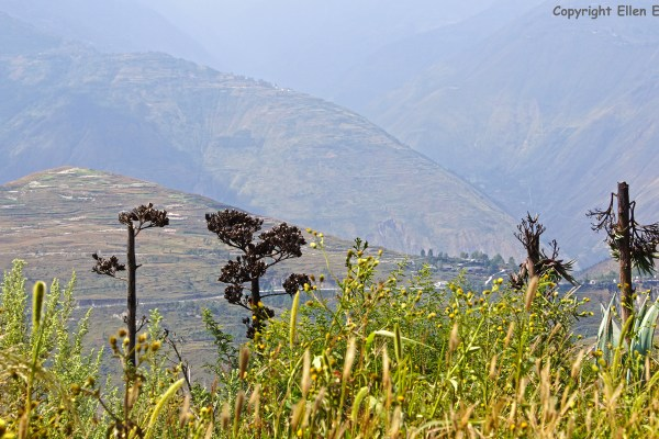 Landscape on the way from Zhaotong to the Dongchuan Red Land