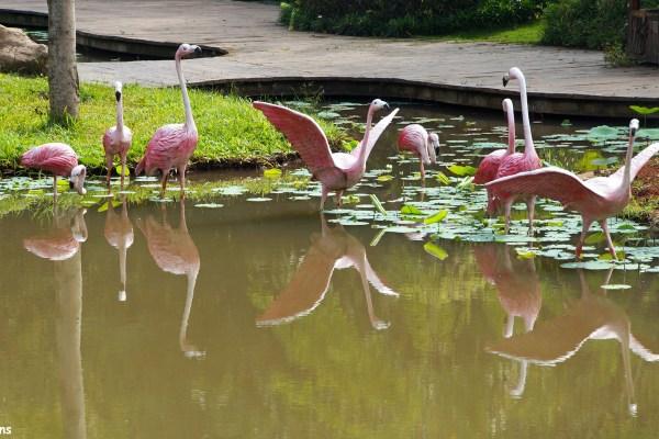 At Manting Park at the city of Jinghong, Xishuangbanna region