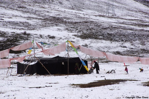 Nomad tent on the way to Yushu