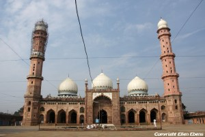 The Taj-ul-Masjid Mosque, Bhopal