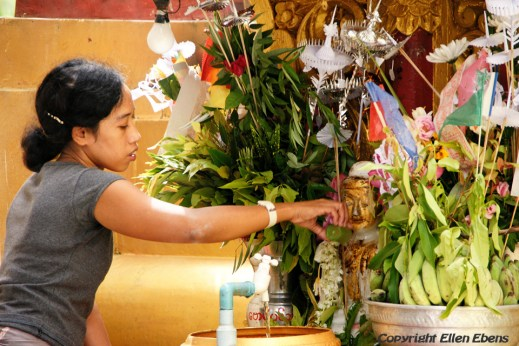 Yangon: offering at the Sule pagoda