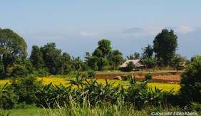 On road from Inle Lake to Kakku