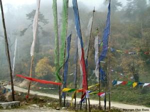 Yutong La pass
