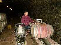 Winery Concha y Torro