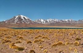 Chile, altiplano