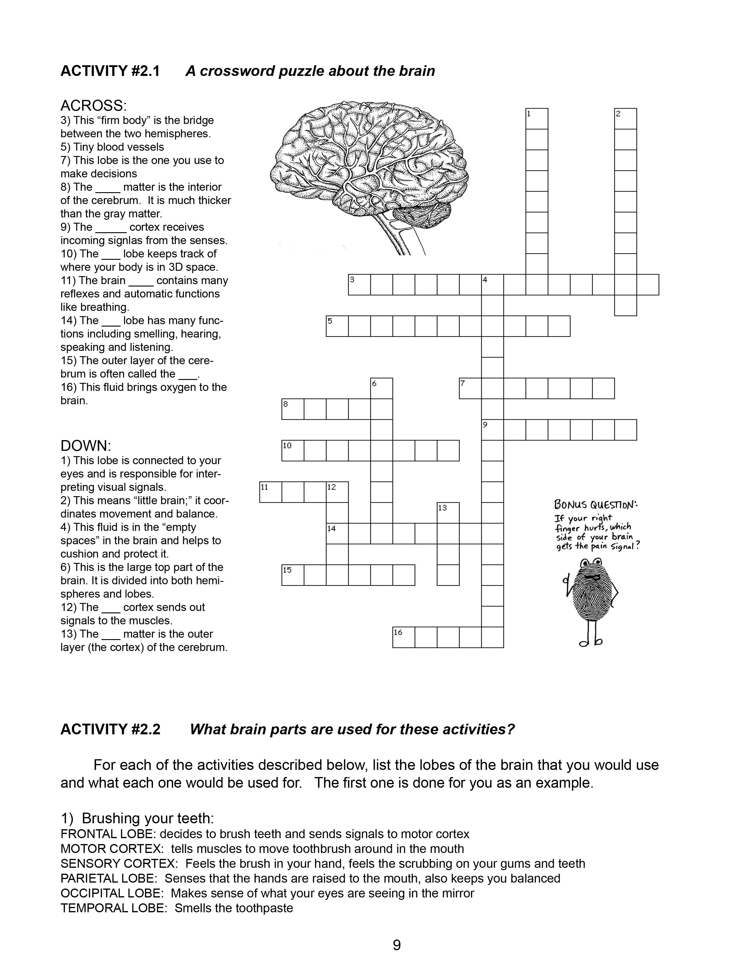 Braincurriculum