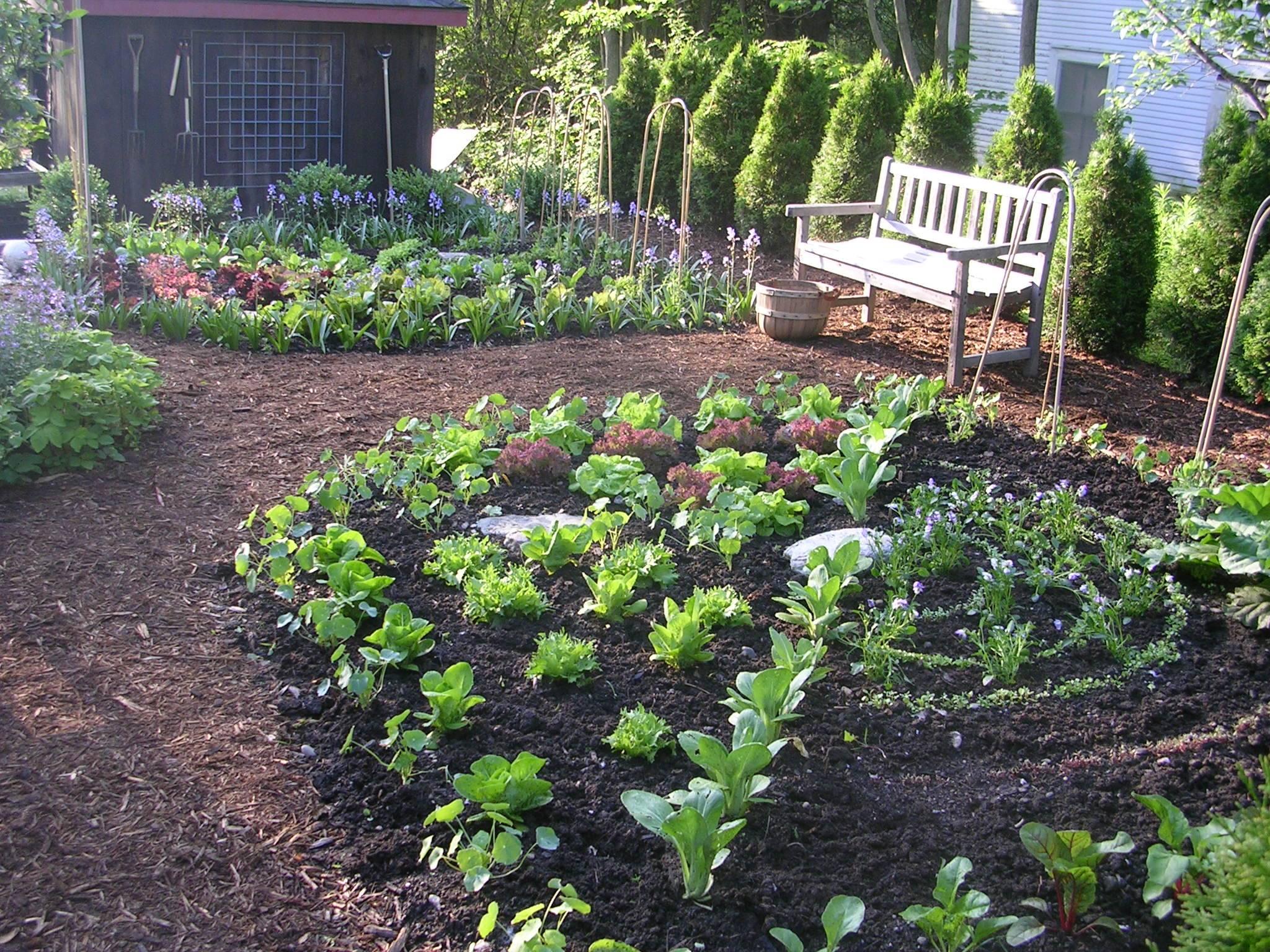 Kitchen Garden Designer Ellen Ecker Ogden