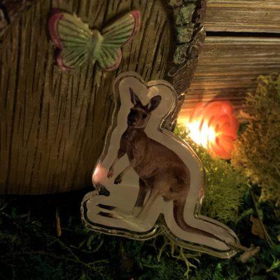 Garie the Kangaroo