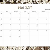 calendrier-2017-ellia-rose-printemps-mai