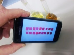 El móvil detecta las diferencias de color de varias membranas, sumergidas en aguas con distinta concentración de mercurio. / J. M. García et al.