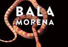 Bala Morena