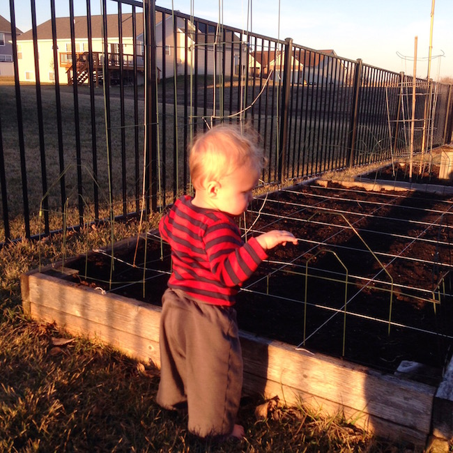 future weed puller