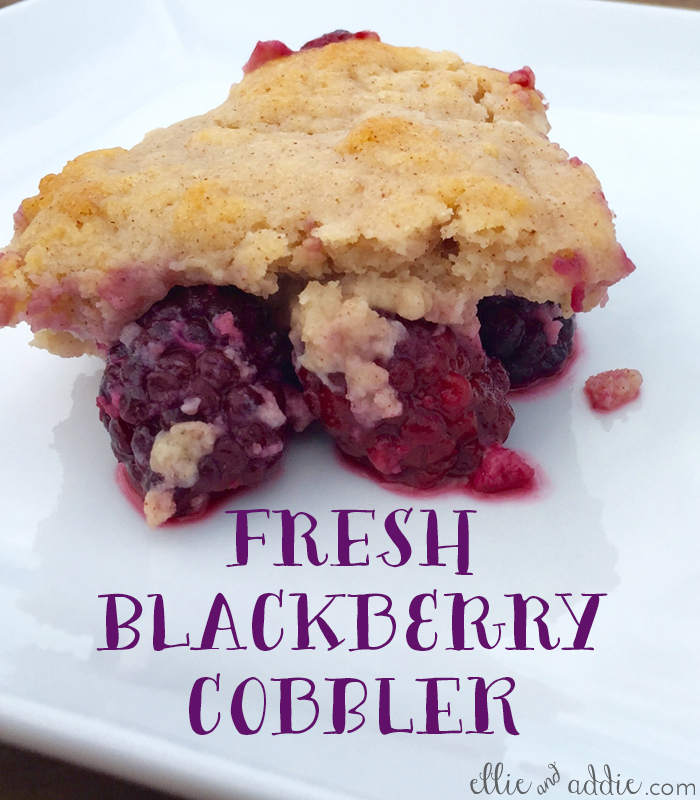 Fresh Blackberry Cobbler | Ellie And Addie