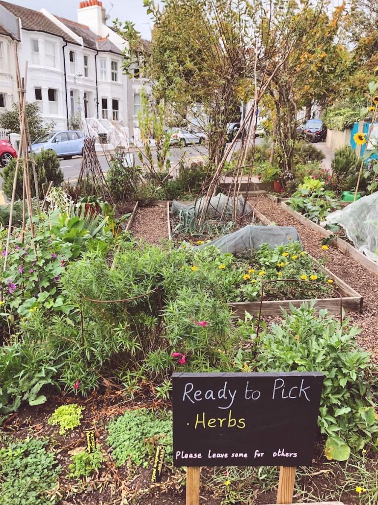 community garden stanford avenue brighton