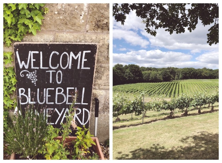 bluebell vineyard east sussex