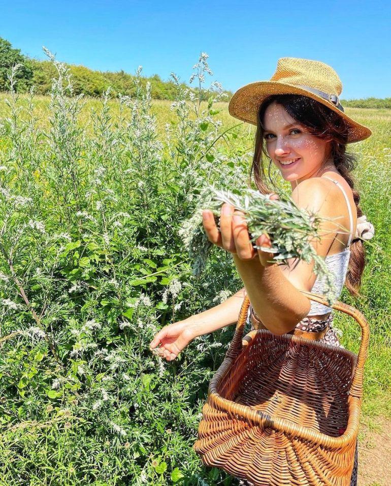 foraging sussex field
