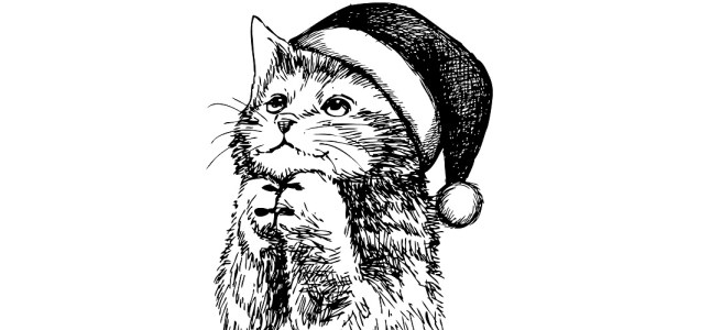 "Cat in Santa hat illustration - ""An Incarceration"" short story"