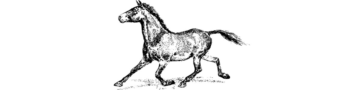 "Horse running illustration - ""When the Shoe is on the Other Hoof"" microfiction"