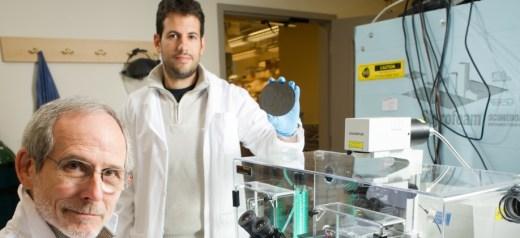 Δημιούργησε ένα τρισδιάστατο μοντέλο για τον εντοπισμό καρκινικών κυττάρων