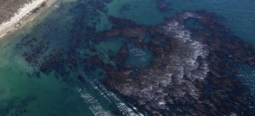 2 Ελληνίδες ανακάλυψαν υλικό για τον καθαρισμό πετρελαιοκηλίδων