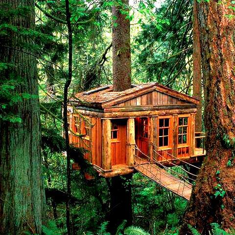 Treehouse, Port Washington, Oregon