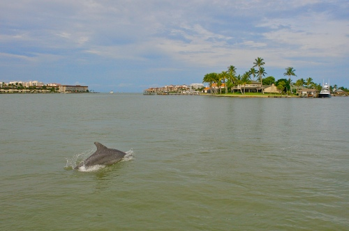 Marco Island Magic: is it just me?