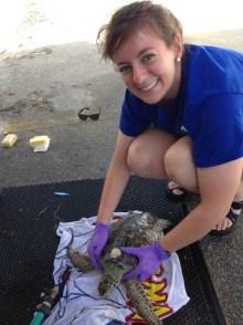 Austin-Leedy-sea-turtle-veterinarian