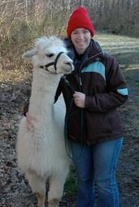 Anna-OBrien-alpaca