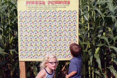 Finger Maze at Ellms Family Farm