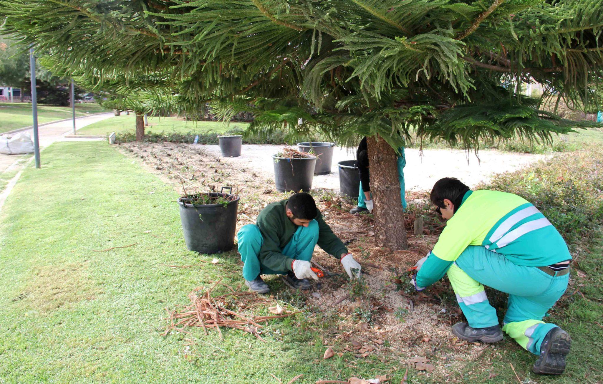 Empleo jardineros zonajobs