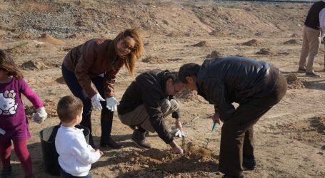 Ayuntamiento y Asivalco revitalizan un espacio degradado de Fuente del Jarro con la plantación de 500 árboles