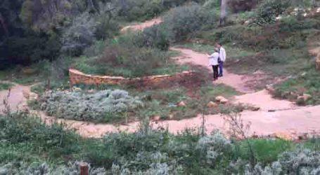 El PP de Torrent pide al ayuntamiento que realice el mantenimiento del Arboretum del Vedat