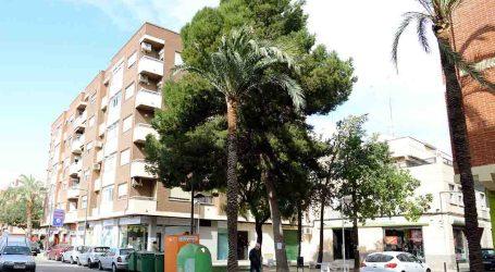 Paiporta combat la preocessionària dels pins