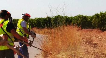 Catorce personas trabajan durante el verano con el objetivo de mantener el entorno rural y forestal