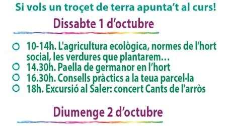 Curso de agricultura ecológica y limpieza de L'Albufera en Massanassa