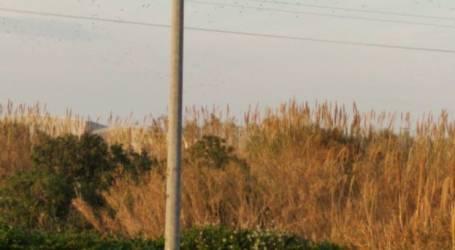 El polígon de Catarroja estrena càmeres de videovigilància per a millorar la seua seguretat