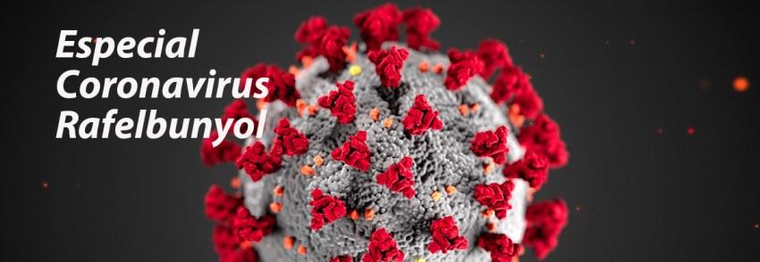 Especial Coranavirus en Rafelbunyol