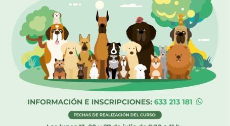 Paterna pone en marcha el curso gratuito de Obediencia Canina Urbana con medidas de seguridad por la COVID-19