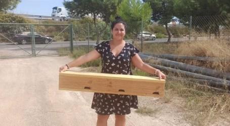 Museros implanta cajas nido para aves urbanas